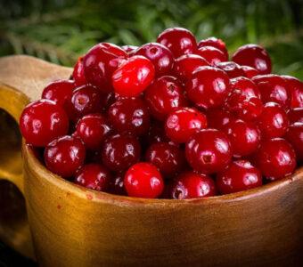 Какие фрукты и ягоды съесть, чтобы согреться?
